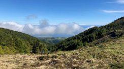 Pico da Vara Junho 2018