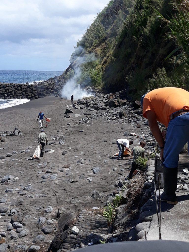 Limpeza e beneficiação da Praia do Lombo Gordo (2)