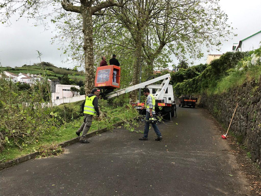 Limpezas e manutenção de bermas em caminhos municipais do concelho