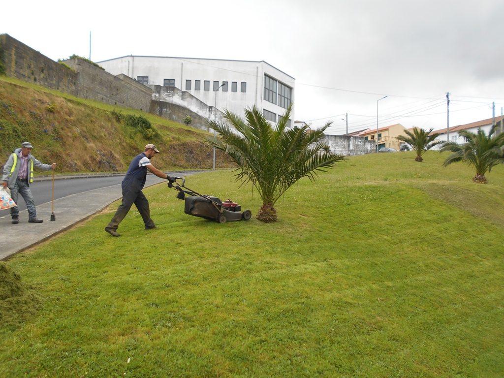 Limpezas e manutenção de jardins no concelho