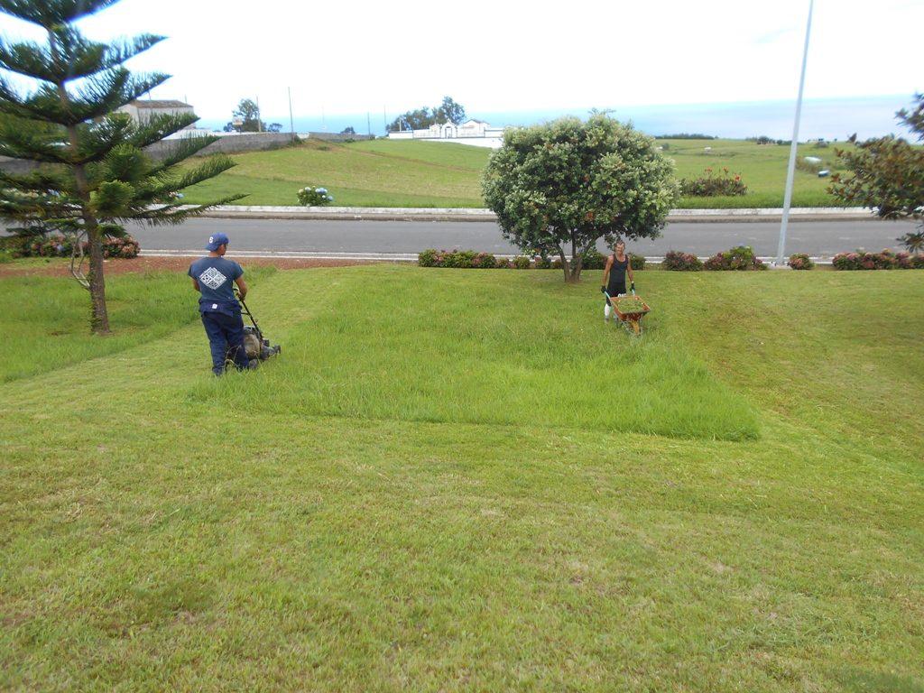 Limpeza de Jardins na Lomba da Fazenda (3)