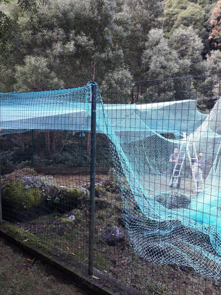 Colocação de vedação para animais (pavões) no Parque de Campismo da Feira