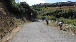 Limpeza do Caminho do Concelho entre a Achadinha e a Achada